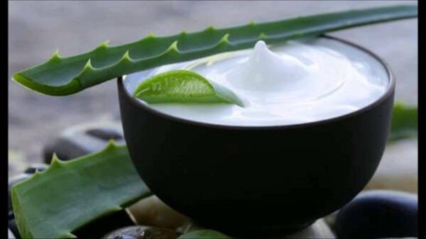 Học ngay cách đắp mặt nạ nha đam để dưỡng da trắng mịn, sạch mụn hình ảnh 3