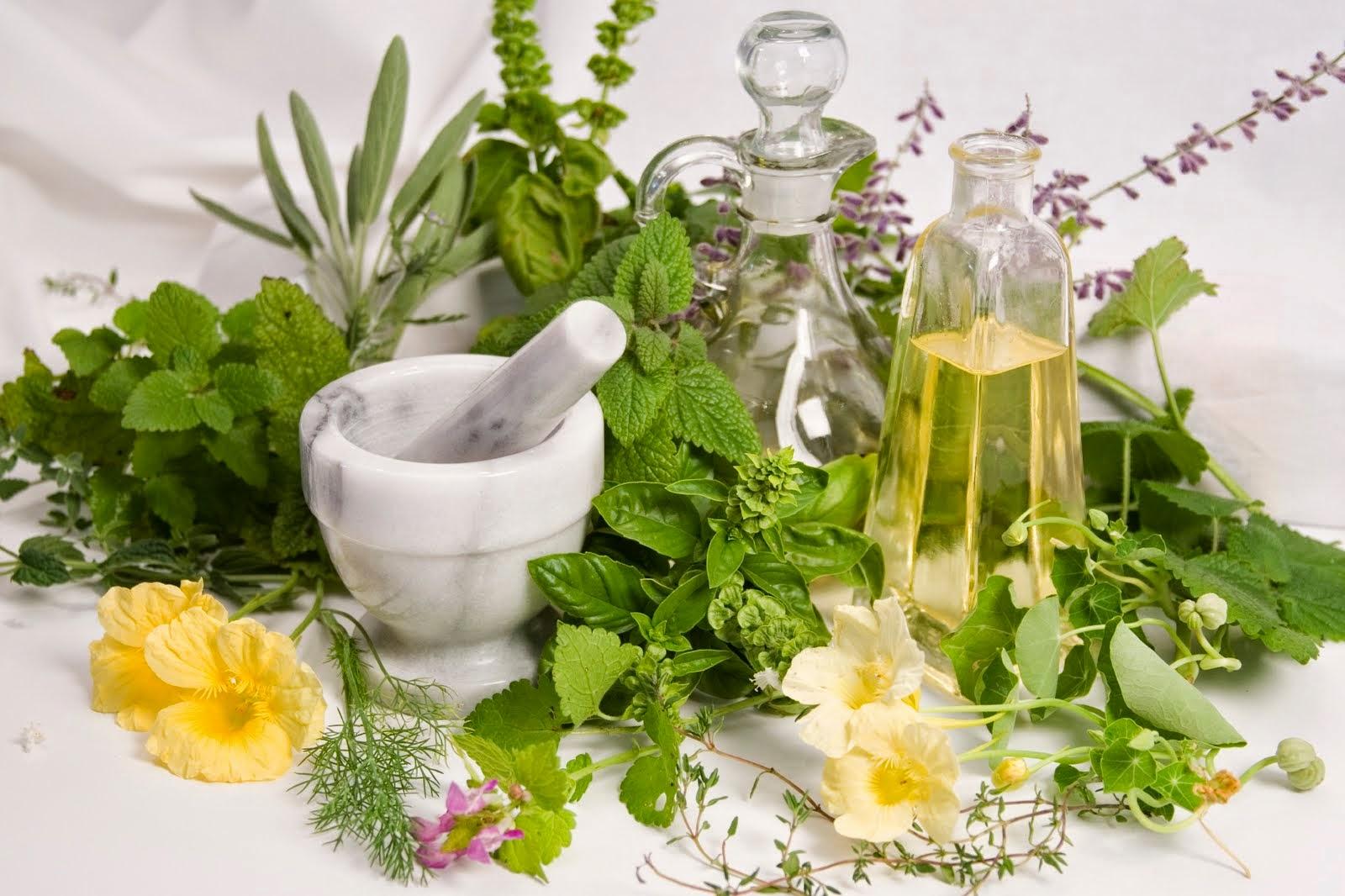 Nên dùng kem dưỡng trắng ban đêm dành cho da nhờn được chiết xuất từ thảo mộc