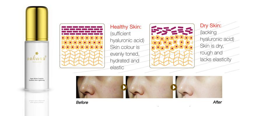 Mang đến hiệu quả dưỡng da cao