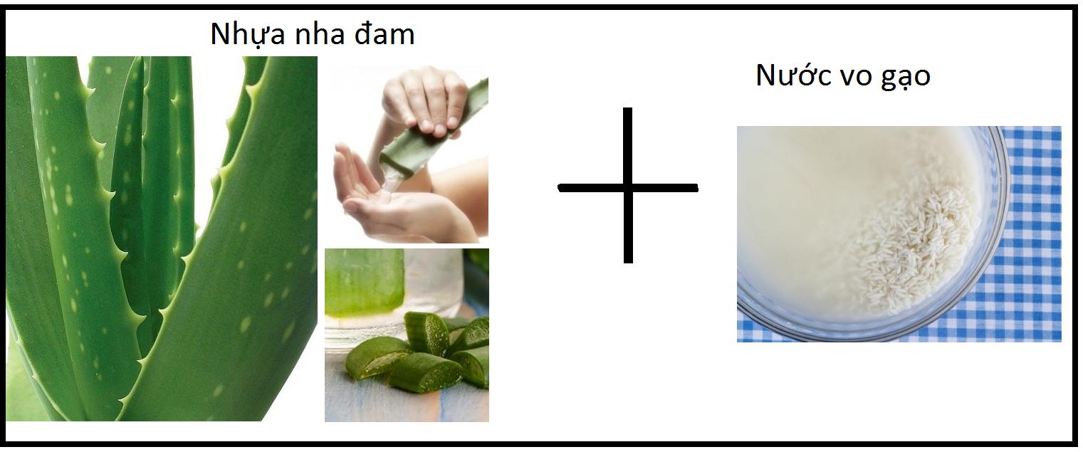 Nha đam và nước vo gạo vừa trị mụn vừa làm sáng da