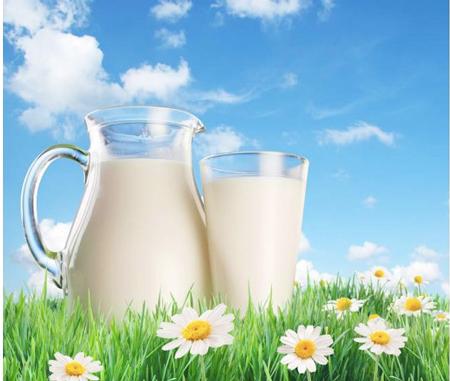 Sữa tươi không đường là một nguyên liệu có tác dụng làm trắng da hữu hiệu