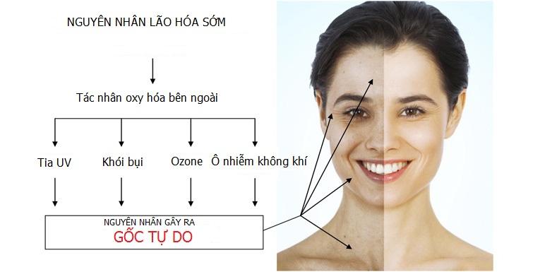Nguyên nhân gây lão hoá da mà bạn cần phải biết