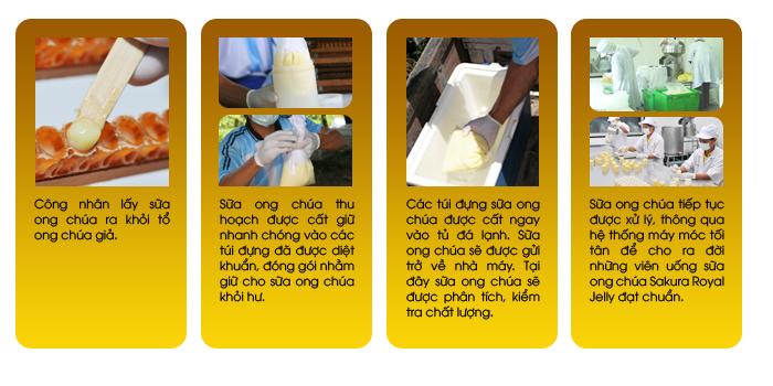 Sữa ong chúa Sakura Royal Jelly Premium là sản xuất từ 100‰ sữa ong nguyên chất