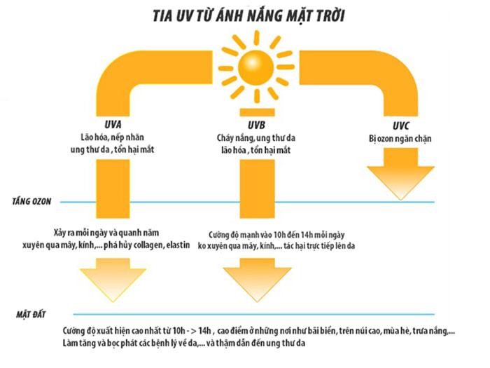 Tác hại của tia UV từ ánh nắng mặt trời khi tiếp xúc với da